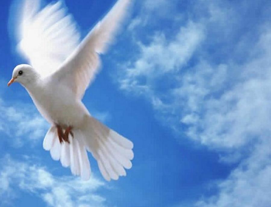 «Ми лише тепер усвідомили цінність миру»