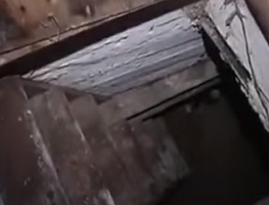 «Люди в подвалы прыгали, а за ними – собаки, коровы, свиньи»